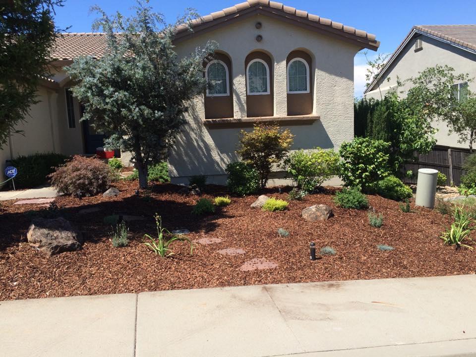 drought-tolerant-landscape-design-in-Sacramento-CA-by-Romeros-Landscape-Inc-015