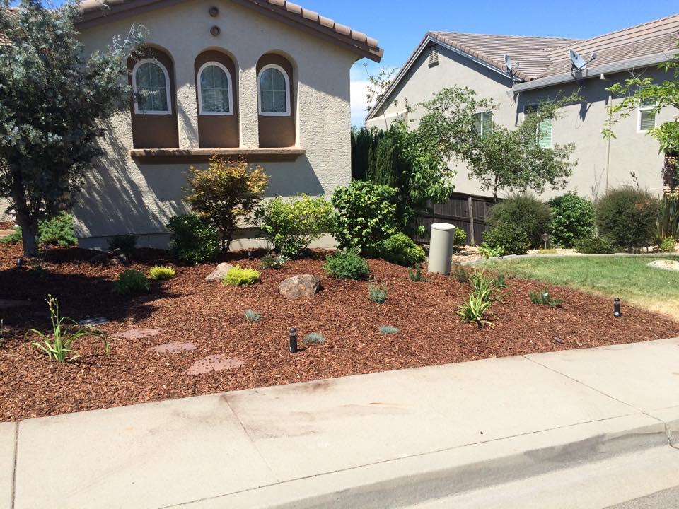 drought-tolerant-landscape-design-in-Sacramento-CA-by-Romeros-Landscape-Inc-016