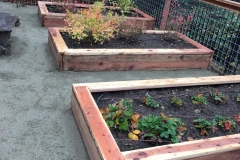 custom-made-wood-planters-and-wood-trellis-and-arbors-in-Sacramento-CA-by-Romeros-Landscape-Inc-003