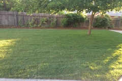 landscape-maintenance-in-Sacramento-CA-by-Romeros-Landscape-Inc-002