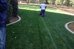 landscape-maintenance-in-Sacramento-CA-by-Romeros-Landscape-Inc-004